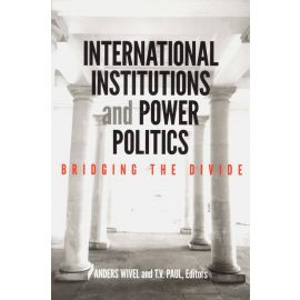 International institutions and power politics. Bridging the divide
