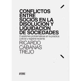 Conflictos entre socios en la disolución y liquidación de sociedades. Cuestiones problemáticas en la práctica judicial y registral reciente
