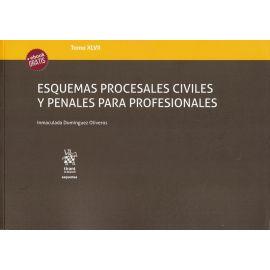 Esquemas procesales civiles y penales para profesionales. Tomo XLVII