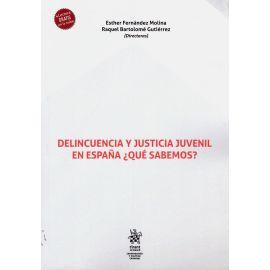 Delincuencia y Justicia Juvenil en España. ¿Qué Sabemos?