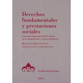 Derechos Fundamentales y Prestaciones Sociales Una Aproximación desde la Teoría de la organización y el Procedimiento