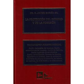 Protección del Dominio y de la Posesión Tratamiento Jurisprudencial.