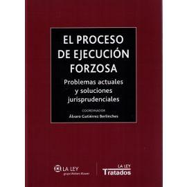 Proceso de Ejecución Forzosa 2015 Problemas Actuales y Soluciones Jurisprudenciales
