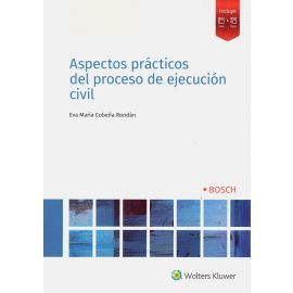 Aspectos prácticos del proceso de ejecución civil