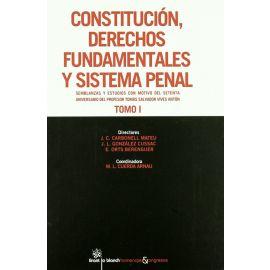 Constitución, Derechos Fundamentales y Sistema Penal. Semblanzas y estudios con motivo del setenta aniversario del profesor Salvador Vives Antón