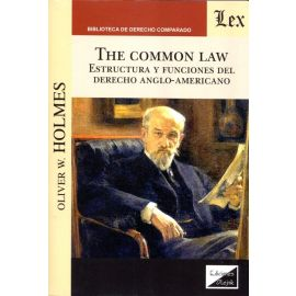 The common law. Estructura y funciones del derecho Anglo-Americano