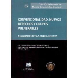 Convencionalidad, Nuevos Derechos y Grupos Vulnerables. Necesidad de Tutela Judicial Efectiva