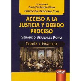 Acceso a la justicia y debido proceso