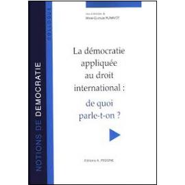 La démocratie appliquée au droit international : de quoi parle-t-on