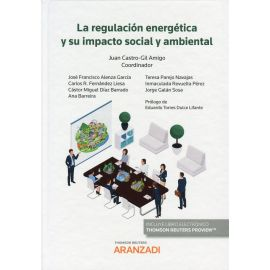Regulación energética y su impacto social y ambiental