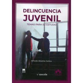 Delincuencia juvenil. Temas para su estudio