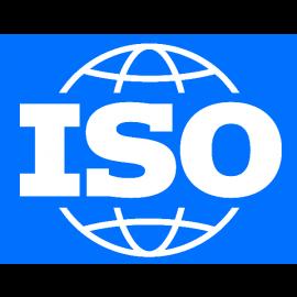 ISO 31000:2018. Risk Management en Inglés