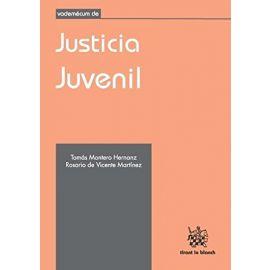 Vademécum de Justicia Juvenil
