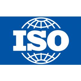 ISO 6721-4: 2019. Plastics. Determination of Dinamic Mechanical Propoerties. Tensile vibraton.Non-resonance Method