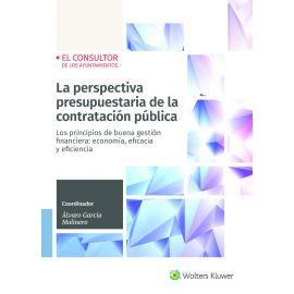 La perspectiva presupuestaria de la contratación pública. Principios de buena gestión financiera: economía, eficacia y eficiencia