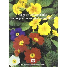 Plagas y Enfermedades de las Plantas en Macetas con Flores