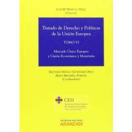 Tratado de Derecho y Políticas de la Unión Europea, Tomo VI