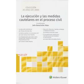 La ejecución y las medidas cautelares en el proceso civil